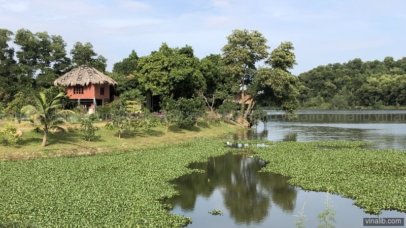 A lake in Nam Son commune, Soc Son district, Hanoi - Vinalib Stock Pictures