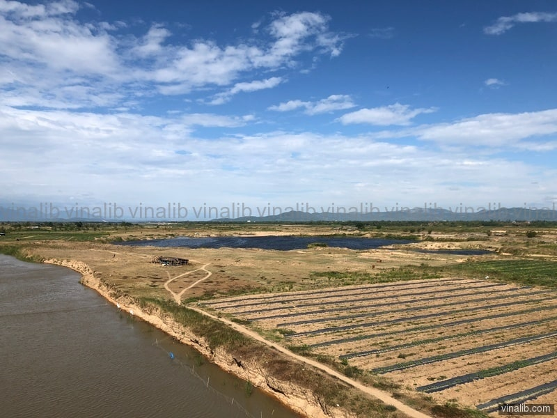 Agriculture in Hoa Thanh commune, Dong Hoa district - Vinalib Stock Pictures