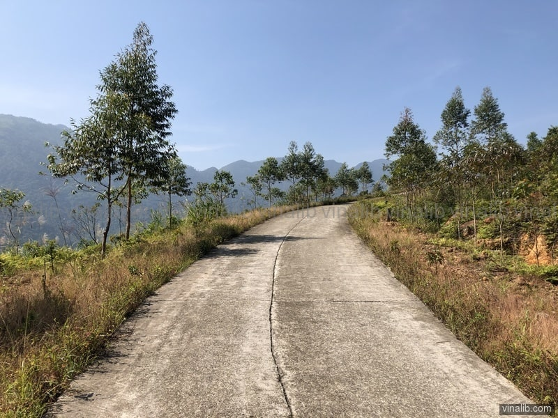 A steep paved mountainous road bordered by trees in Binh Lieu district - Vinalib Stock Pictures