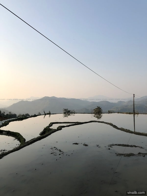 Flooded rice terrace, Na Hang, Tuyen Quang - Vinalib Stock Pictures